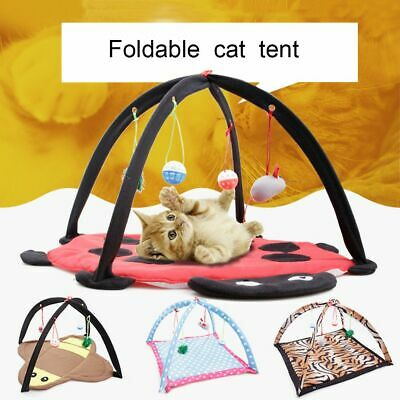Ball Mobile Funny Training Mat Pet Tent Cat Foldable Bed Kitten Playing Toy