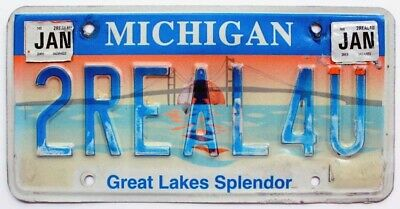 TOO REAL FOR YOU Michigan Great Lake Splendor Personalized Vanity License Plate