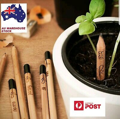 8 PCS/Set Sprouting Bud Sprout Pencil Plant - Herb Basil Tomato Green Pepper AU!