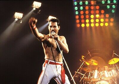 Freedie Mercury Queen Poster Print Art Picture A3 Wall Art