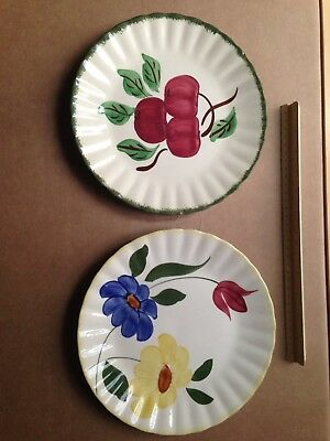"""Pair Vintage Blue Ridge Southern Pottery Apple and Flowers 9+"""" Dinner Plates"""