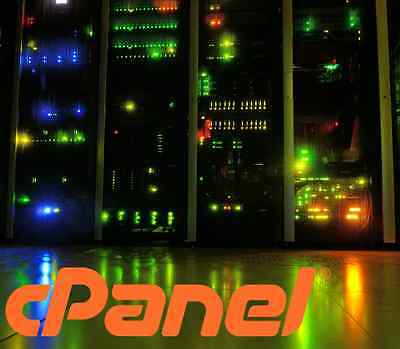 Webmaster managed cPanel Web Hosting 1 year prepaid - OneClick web Installer
