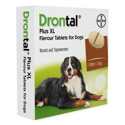 Drontal Plus XL Wormer for dogs >35kg 77lbs Bayer Made in Germany 2 tablets
