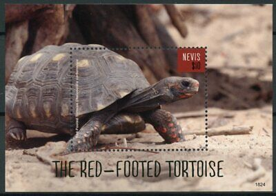 Nevis 2018 MNH Red-Footed Tortoise 1v S/S Tortoises Turtles Reptiles Stamps