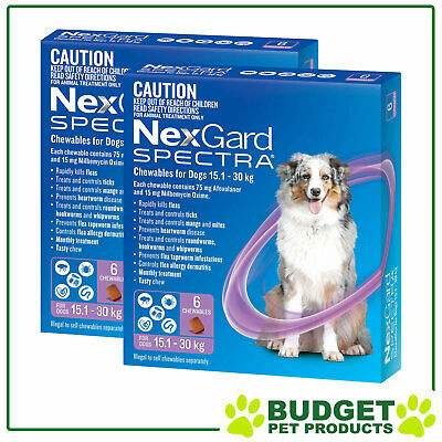 NexGard Spectra Chewables For Dogs Purple 15.1-30kg 12 Pack