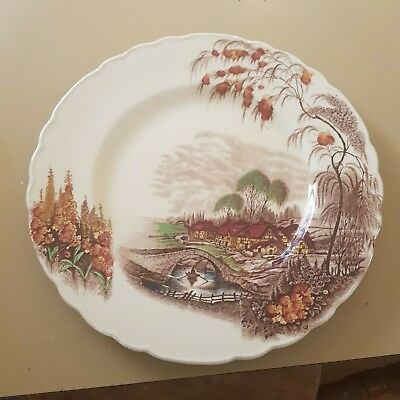 COUNTRY SIDE DISPLAY PLATE Wilkinson Burslem made in ENGLAND Staffordshire