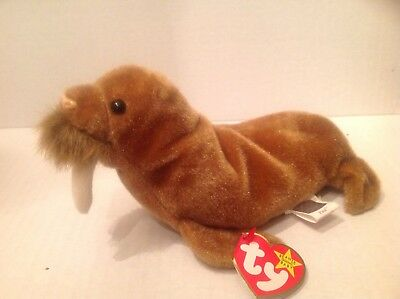 Ty The Beanie Baby Paul the Walrus  NWMT