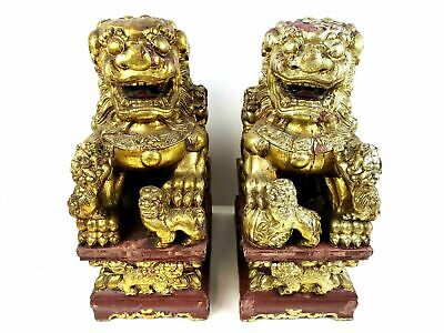 Pair of Hand Carved Gilded Chinese Foo Dogs with Red Lacquer Bases