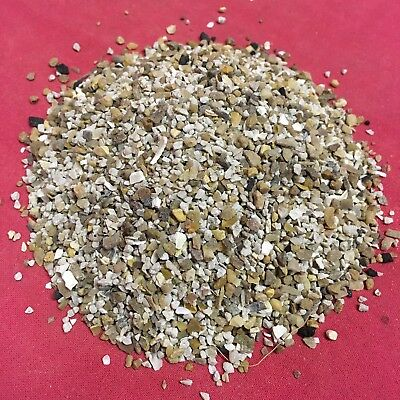 Bird Grit Fine Oyster Shell Calcium 90grm Budgie Cockatiel Finch Canary Lovebird