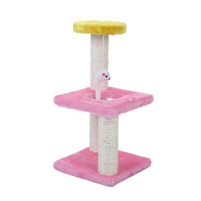 Cat Kitty Tree Scratcher Furniture Play Post House Pet Bed Hammock Kitten Toy (R
