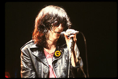 Joey Ramone Poster 24x36 inch rolled wall poster