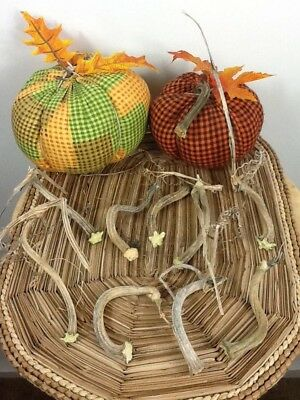 """Pumpkin Stems 10 Excellent Quality Naturally Dried 3.5""""-4"""" Stems Lots Of Curlies"""