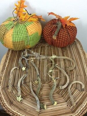 """Pumpkin Stems 10 Excellent Quality Naturally Dried 3.5"""" Stems Lots Of Curlies"""