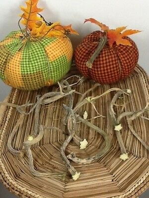 """Pumpkin Stems 10 Excellent Quality Naturally Dried 5- 6.5"""" Stems Lots Of Curlies"""