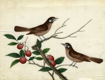 Antique 19th-century Chinese Pith Painting, Pair of Birds on Berry Branch