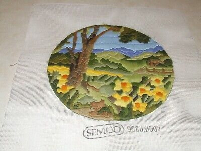 Long Stitch - Scenic - Completed