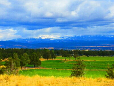1-acre Ranch Property    California Pines	 MODOC COUNTY