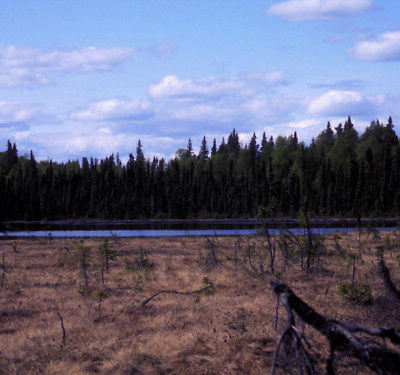 Alaska Land - 240 Ac. Near Talkeetna / Road Access & Lake