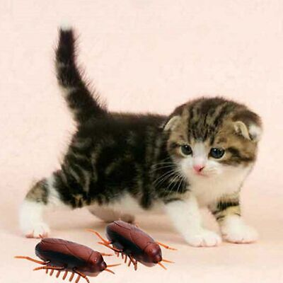 Pet Cat Toy Vibrating Insect Electronic Cockroach Interactive Training Play