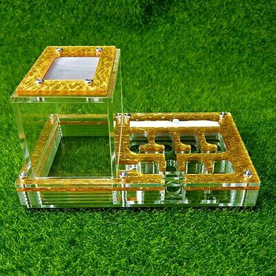 Acrylic Ant Farm Housing Small Ant Nests Formicarium For Ant Colony + 5 Colours