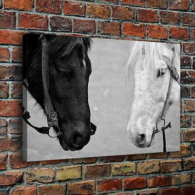 Two horses at close range HD Canvas print Painting Home decor Room Wall art