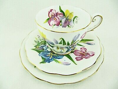 Royal Standard Cup Saucer Dessert Plate Trio - Winsome - Irises - Beautiful!
