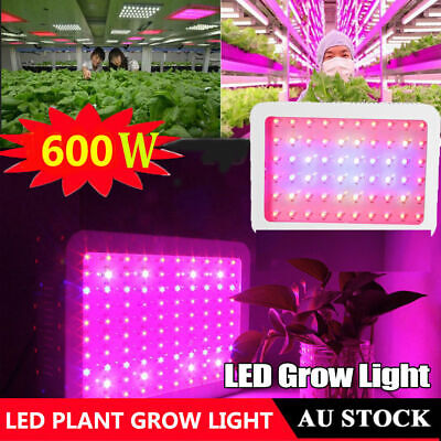 600W LED Grow Light Full Spectrum Indoor Plants Veg Bloom Flower Panel Lamp