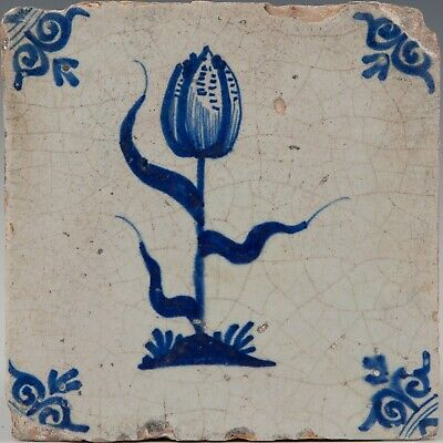 Nice Dutch Delft Blue tile, tulip, first half 17th. century, Golden Age.