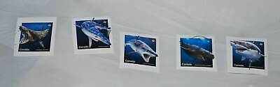 Sharks Stamps from Canada 5 Stamp full Set used