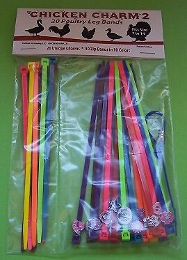Leg bands-rings  CHICKEN CHARM   NO 2 (pkt 20 charms/bands PLUS 10 spare bands)