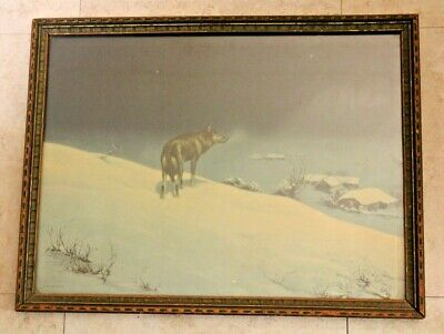 """Antique Framed Glass Lone Wolf Print Borin Chicago - 1925 -  17.25"""" x 13.25"""""""