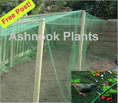 Garden Netting, Strong, 10M x 4M - keep pests off plants, ponds, fruit-cage