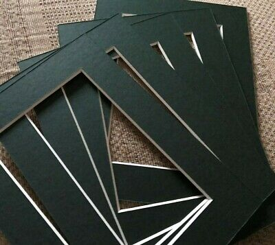 Pack of 5 Picture Frame Mounts 8 x 6 inch for 6 x 4 Photograph Holly Green