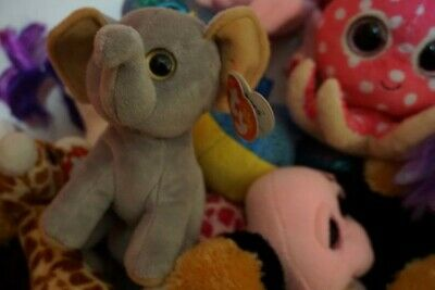 09242b16ba3 TY BEANIE BABY SAHARA the elephant Tan Ears 6