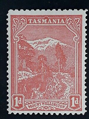 1905- Tasmania Australia 1d Rose red Pictorial Stamp Perf 11X12 1/2 Mint