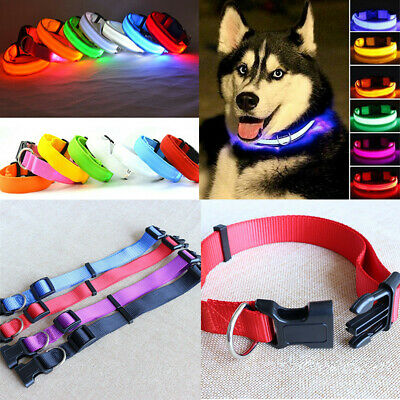 Pet Dog Nylon Collars Charming Solid Adjustable Collar + LED Glow Dogs Leash
