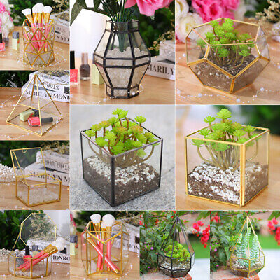 Open Glass Geometric Terrarium In/Outdoor Display Flower Pot Vase Moss Planter