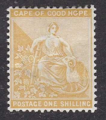 South Africa - Cape of Good Hope - 1893 - 1 shilling - MH (B1E)