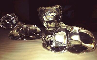 """2 Baccarat Crystal Art Glass Cow Figurines Laying Down 4 1/4"""" Long x 3.0"""" Tall"""