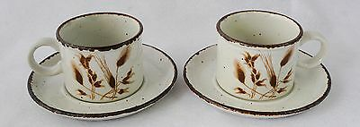 Midwinter Stonehenge Wild Oats Coffee Cups with Saucers Set of 2