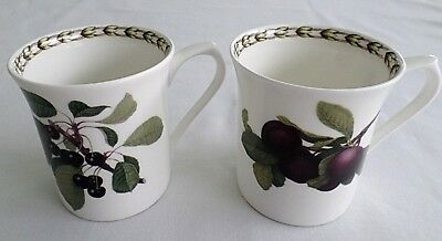 2  Queen's Fine Bone China, Hookers Fruit Coffee Cups