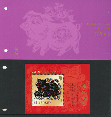 Jersey 2019 MNH Year of Pig 1v M/S Pres Pack Chinese Lunar New Year Stamps