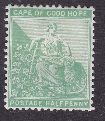 South Africa - Cape of Good Hope - 1893 - Halfpenny - MH (B13C)