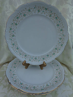 """Mitterteich Lady Patricia 10162 Dinner Plate. 10.5"""". Germany."""
