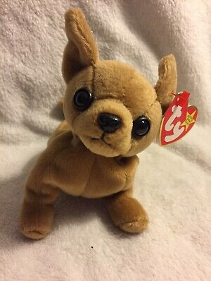 38278580324 TY BEANIE BABY - TINY the Chihuahua Dog - WITH errors 1998 -  50.00 ...