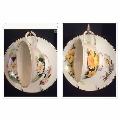 Two Teacups & Saucers Rosenthal Porcelain Wildflowers Waterlily & St Johnswort