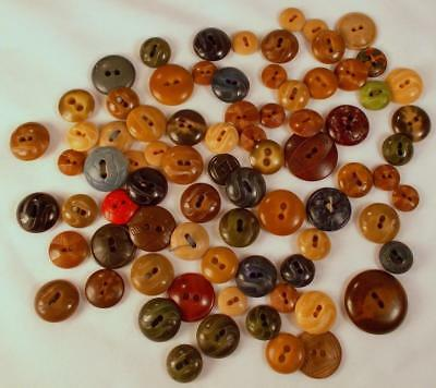 Lot 78 Vtg 2 Hole Buttons Vegetable Ivory Tagua Nut Colt Plastic Celluloid Dome