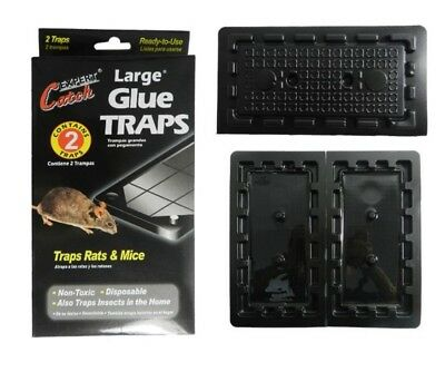 2 X Large Rat , Mice And Mouse Glue Traps Free Delivery Uk