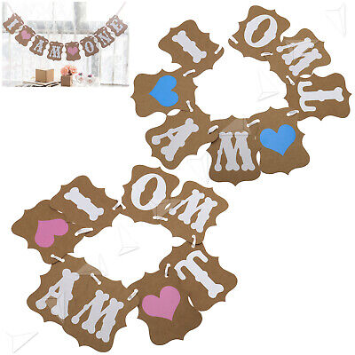 Girls Boys Shower I AM TWO Bunting Party Banner Garland Photo Props Decor Sign