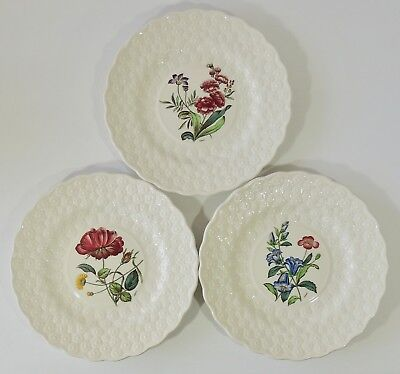 3 Copeland Spode Fernleigh Embossed Daisy Luncheon Salad Plates Signed A Ball